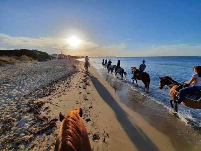 Passeggiata a Cavallo tra le Dune Costiere & Mare